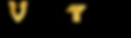 VKTRY_inline_tag_blkGld_R_c44ac807-a013-