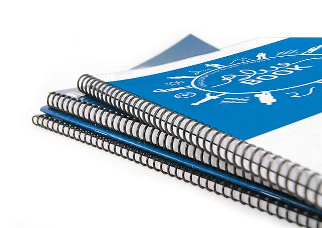 alstom-blue-book.jpg
