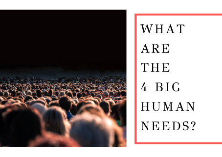 What Are The 4 Big Human Needs?