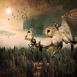 OWLS RGB.jpg