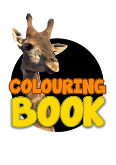 PNG COLOURING BOOK.png