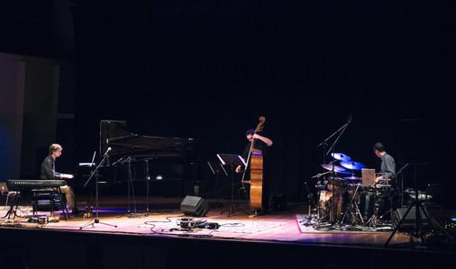 Trichotomy Ensemble in Residence QCGU 2016