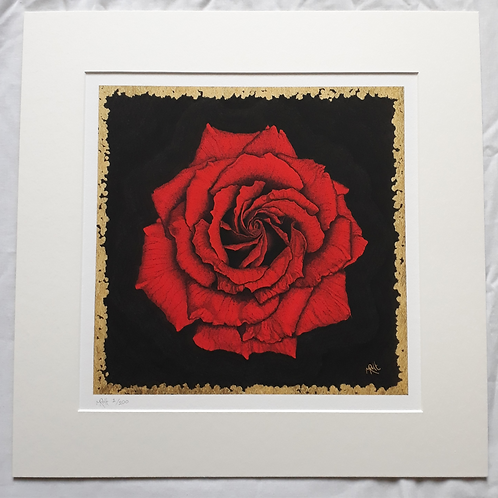 The Red Rose: Love PRINT
