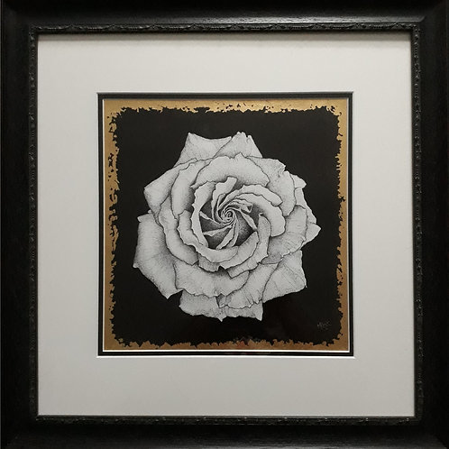 The White Rose: Resistance