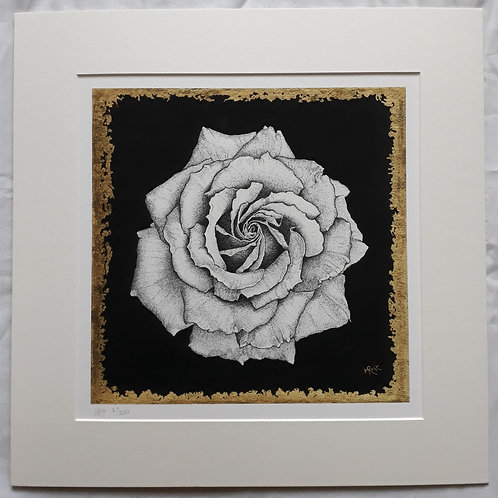 The White Rose: Resistance PRINT