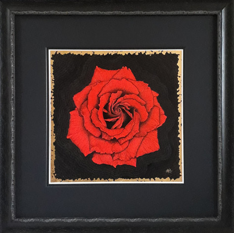The Red Rose: Love