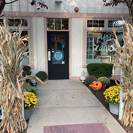 Pippi & Peanuts loves Fall! Stop by to s