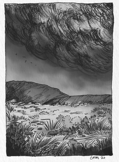 pencil landscape - courtney moore