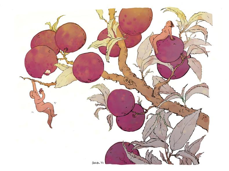 plum people.jpg
