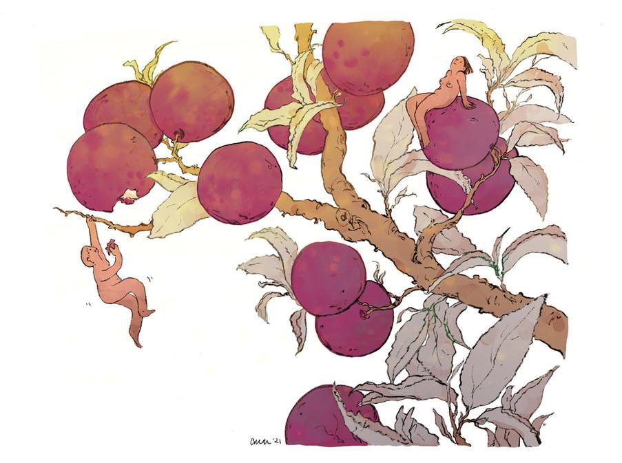 plum people