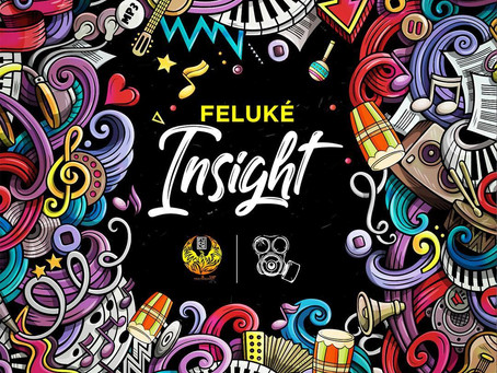 Feluke - Insight