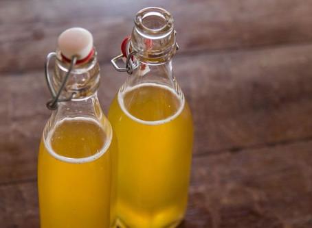 Les 4 raisons de boire du Kombucha