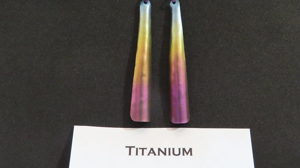 Titanium Earrings #2065