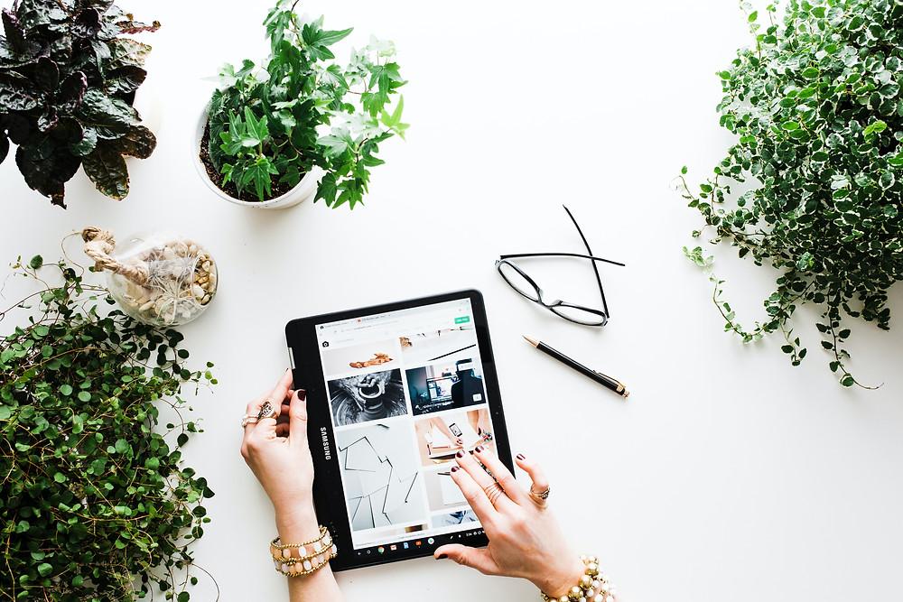 Sustainability, E-commerce, Ecommerce, Web Design, The SustainabilityX® Magazine