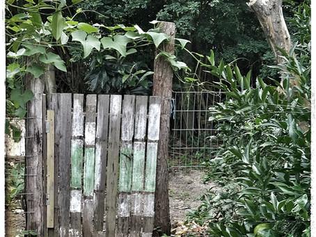 a horta
