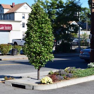 Cranston St. Providence, RI