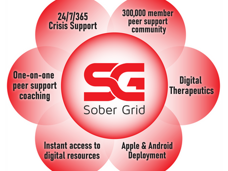 Sober Grid: An Overview