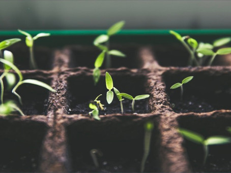 Wie gelingt Eco-Innovation?