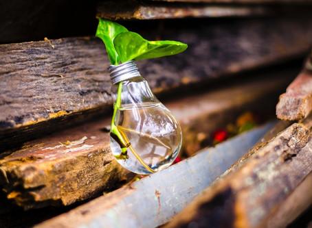 Eco-Innovate!