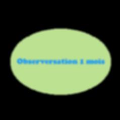 observervation1.png