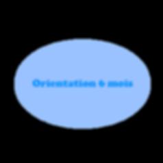 Orientation6.png