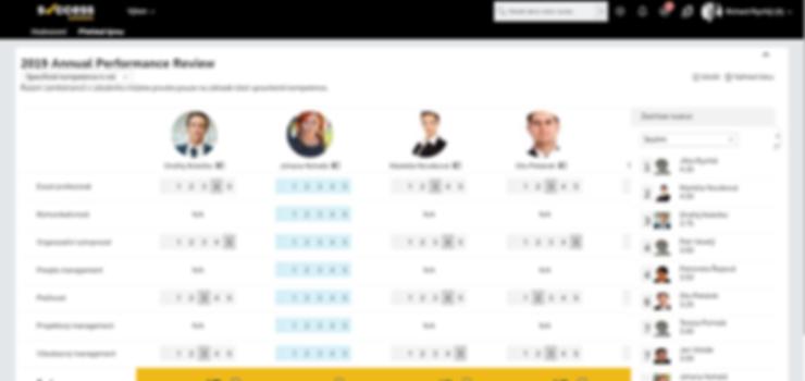 Success-solutions-SuccessFactors-Perform