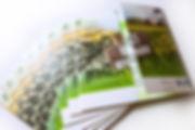 content_ZGV_Fensterfalz.jpg