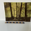 Thumbnail: WOODLAND SCENE WITH TREES PAINTING - vintage oil on board