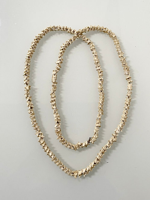 SNAKE BONE NECKLACE - vintage decorative taxidermy
