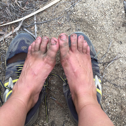 The PCT: One Month Later