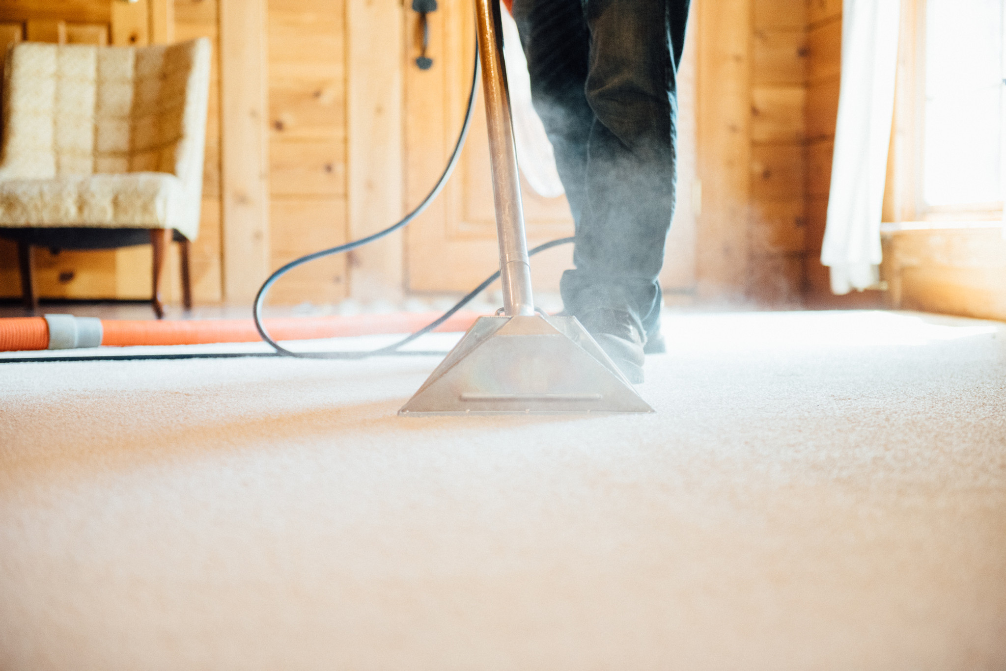 Free Carpet & Upholstery Cleaning Quote