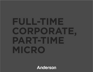 Anderson The Fish | Business Development | Business Consultation