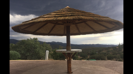 1 Post Palapas-African Thatch
