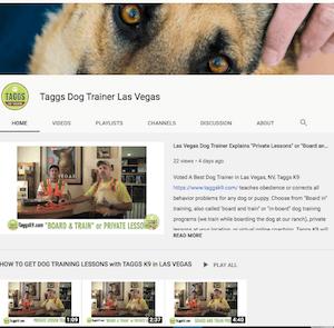 Taggs K9 Dog Training Las Vegas YouTube