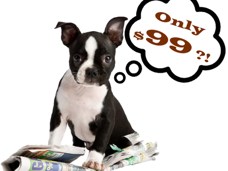 Las Vegas Dog Training Introduction Private Lesson and Evaluation Only $99 Dollars