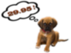 Puppy-2995-200x151.png