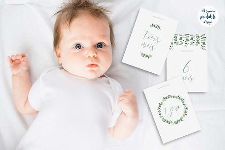 carte-etape-bebe-eucalyptus-4.jpg