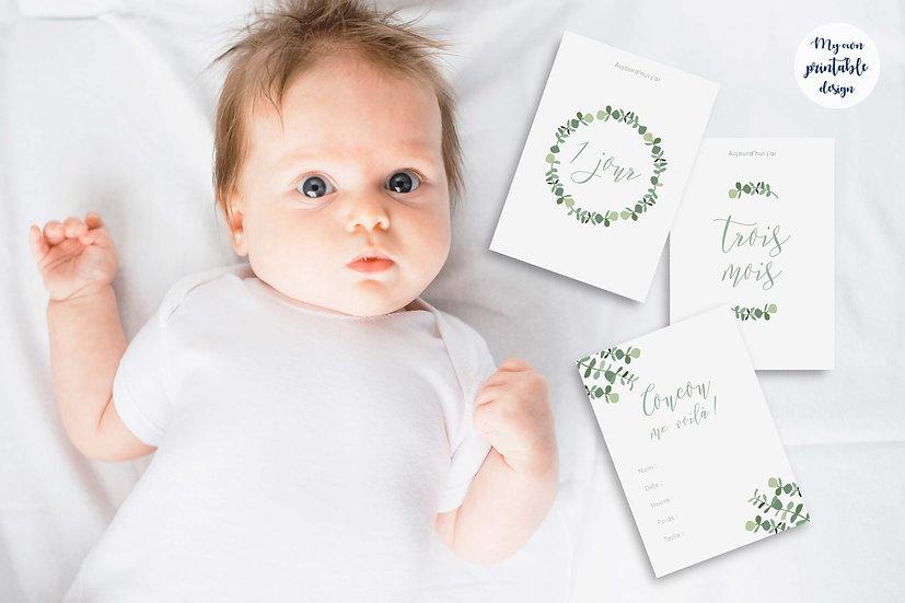17 cartes étapes bébé - Collection eucalyptus - Fichier numérique