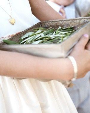lancer de feuilles d'olivier dans une boîte en métal
