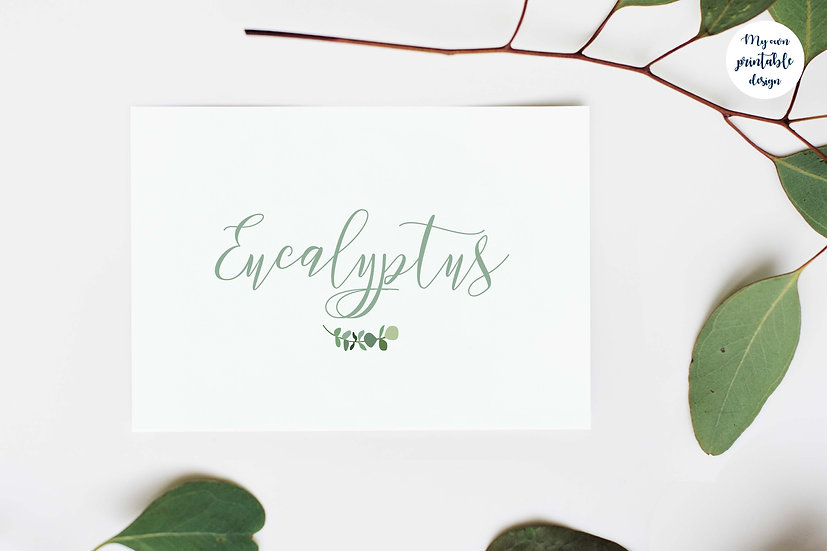 Marque table - Collection eucalyptus - Fichier numérique
