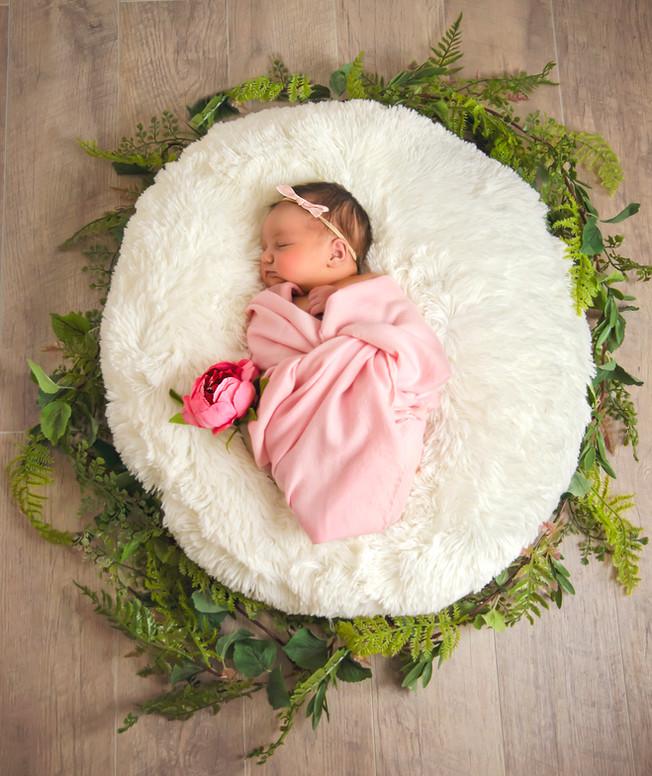 In Studio Newborn Session   New Jersey Family Photographer