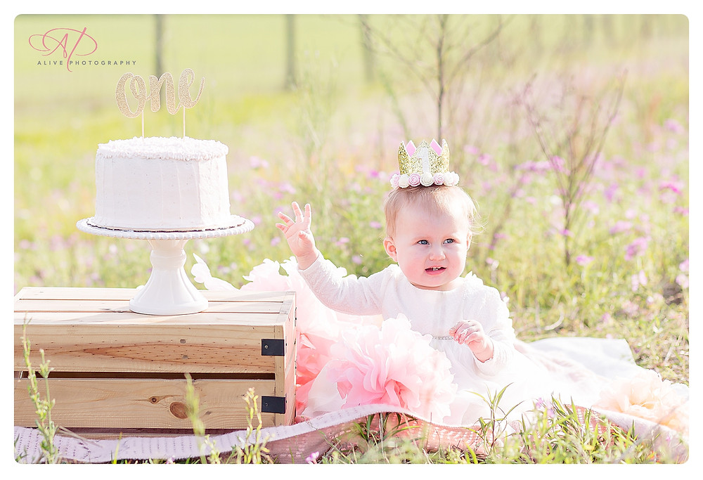 Abby 1st Birthday | Wild Flower Field | Alive Photography