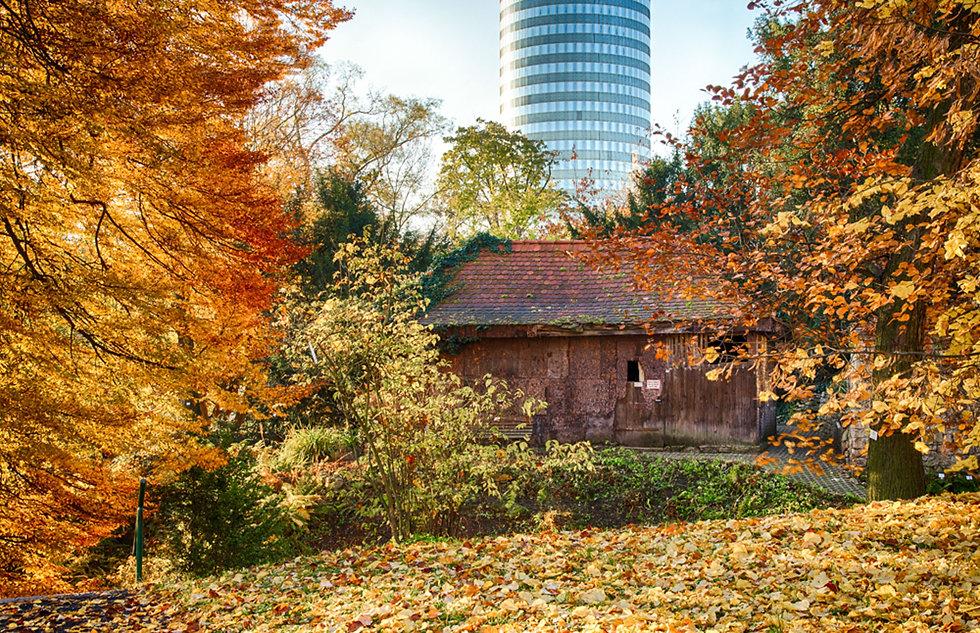 Botanischer_Garten_Jena_Bild_Sehenswürd