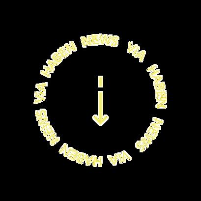 VIA-HABEN-NEWS-gelb.png