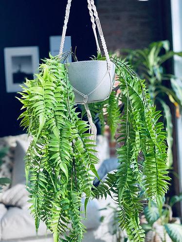 Planta Artificial Helecho Colgante