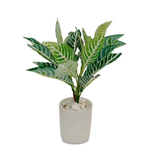Planta Artificial Afelandra