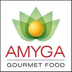 Amyga-Logo-Gourmet-FOOD.png