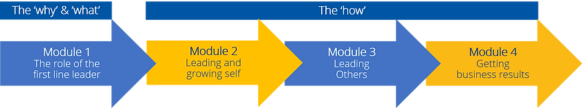 iLead blended learning journey modules