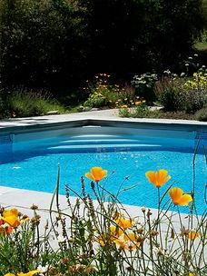 B. Pool & Poppies.jpeg