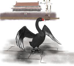 《被抓的黑天鵝》匿名
